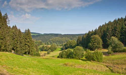 Berg und Tal VDN Petra Küsterb Thüringer Wald