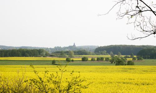 Blick auf Sternberger Kirche beitrag Land der Fischer und Durchbruchstäler   Naturpark Sternberger Seenland