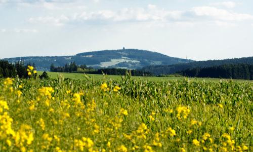Blick auf den Döbraberg Bildrechte Frankenwald Tourismus A. Hub B Der Döbraberg