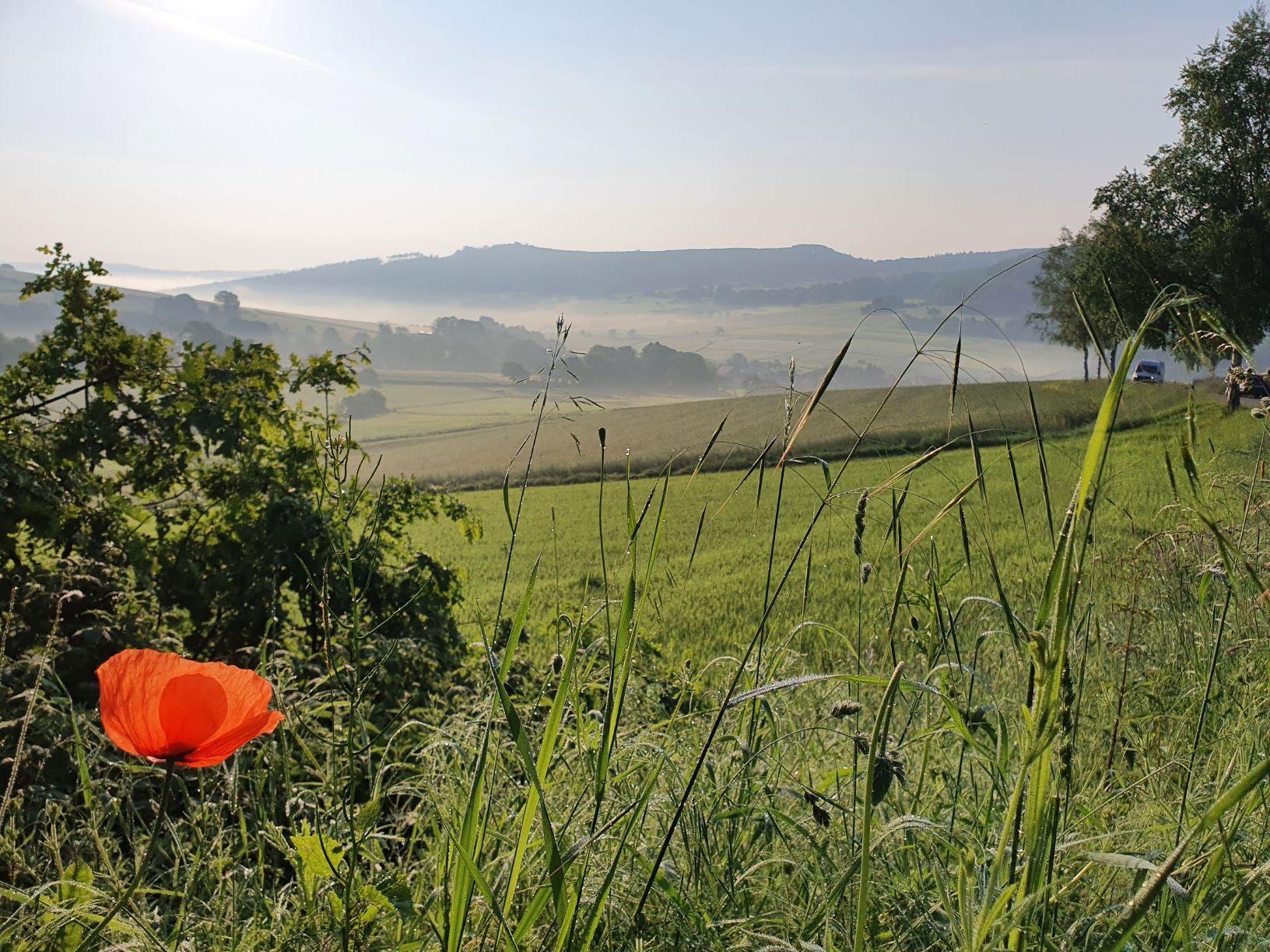 Blick nach Neuenstein c Anders m Der Neue: Naturpark Knüll