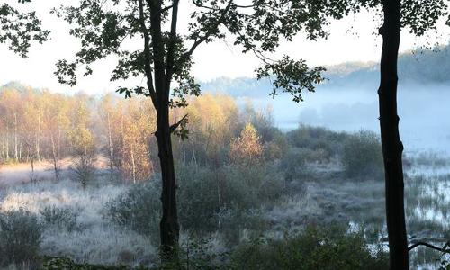 Blick vom Beobachtungsturm Salemer Moor beitrag Naturpark Lauenburgische Seen – Stille und Natur aktiv erleben