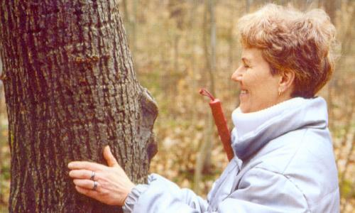 Blinder Baum c VDNb Naturparke für alle – barrierefreies Naturerleben in Deutschland