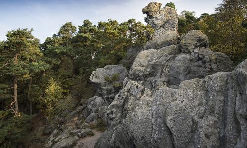 Dörenther Klippen Beitrag Natur  und Geopark TERRA.vita