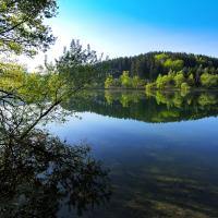 Frühlingsmorgen an der Lingese © VDN/Eberhard Decker