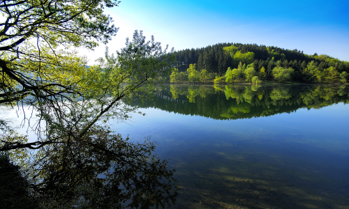 """DSC1046 Beitrag in Artikel """"Buckelige"""" Welt – Naturpark Bergisches Land"""