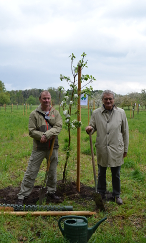 """DSC 0233b """"Pflanzwerk"""" – VDN pflanzt Obstbaum im Ministersortengarten"""