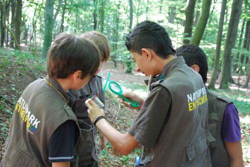 DSC 0239 web Naturpark Entdecker Westen