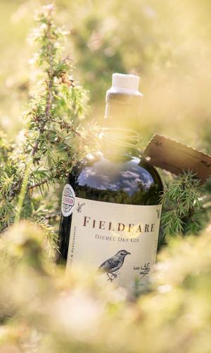 Dry Gin 8b Fieldfare – Diemel Dry Gin: der erste regionale Gin Nordhessens