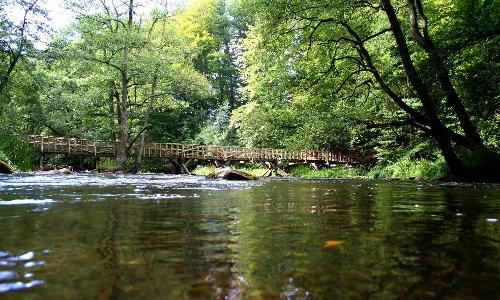 Durchbruchstal der Warnow bei Gr. Görnow beitrag Land der Fischer und Durchbruchstäler   Naturpark Sternberger Seenland