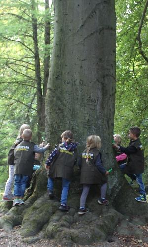 """Einsatz der Westen im Naturpark Unteres Saaletal b Naturtalent """"Naturpark Entdecker Weste"""""""