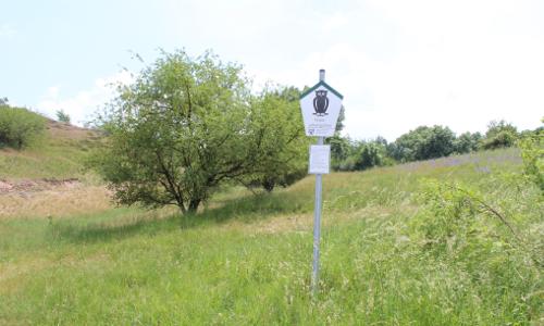 Erlebnistipp Naturschutzgebiet Porphyrlandschaft bei Gimritz B Naturlehrpfad Porphyrlandschaft Wettin/ Gimritz