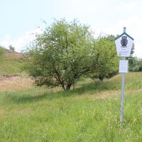 Naturschutzgebiet Porphyrlandschaft bei Gimritz © Unteres Saaletal