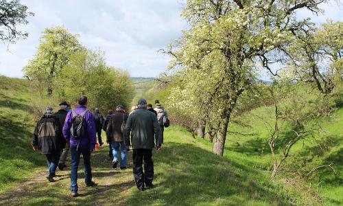 Erlebnistipp Wandergruppe unterwegs auf dem Naturlehrpfadb Naturlehrpfad Porphyrlandschaft Wettin/ Gimritz