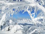 """Foto des Monats Februar - """"Eiszeit""""  von Günter Linderer - Copyright: VDN/ G. Linderer"""