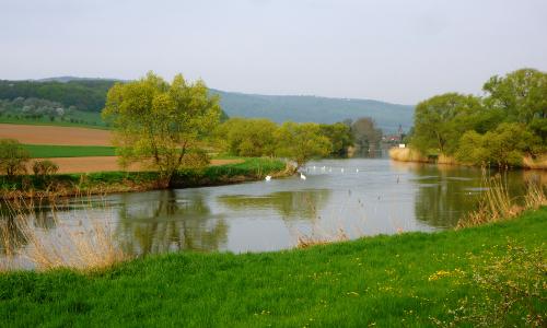 Frühling an der Werra c Sibylle Susat beitrag Spannend und vielfältig – Naturpark Münden