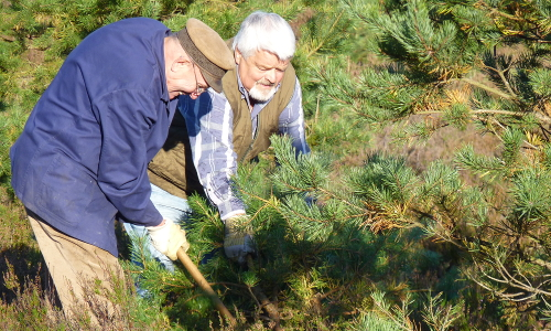 Generali Berichte d NRP Lüneburger Heide Bilder Endjahresbericht 4 HerzensSache Natur – Freiwilligenengagement in Naturparken