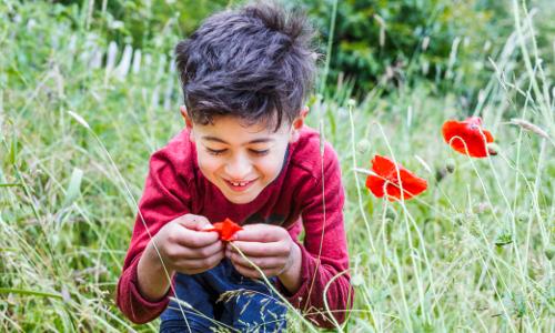 GymnicherMuehle 94b In die Zukunft gedacht   Netzwerk Naturpark Schulen