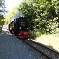 Harzer Schmalspurbahn bei der Einfahrt © Naturpark Südharz