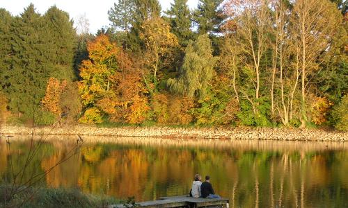 Herbst 2005 21 editedb Naturpark Arnsberger Wald