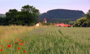 Landidylle im Naturpark Stromberg-Heuchelberg - Copyright: VDN/Rudi Thalhäuser