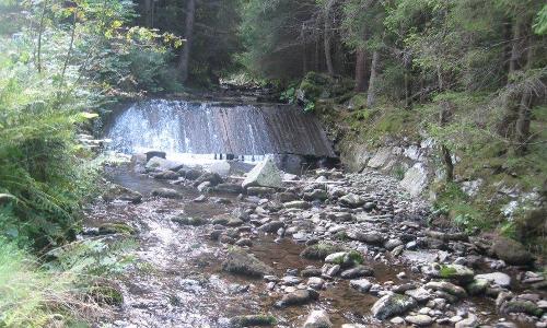 """IMG 7107 Copyright Naturpark OBW Beitrag """"Beispielhaft"""" – Gewässerschutzprojekte in Naturparken"""