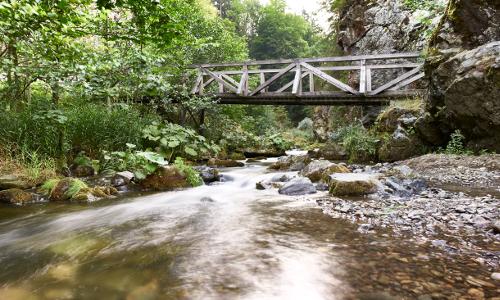 Im wildromantischen Steinachtal Bildrechte Naturpark Frankenwald Marco Felgenhauer B Naturpark Frankenwald
