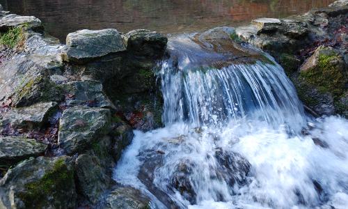 Kalksinterterrassen in Dissen a.T.W Beitrag. Natur  und Geopark TERRA.vita