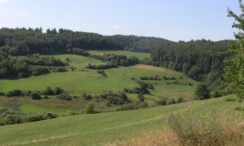 "Kellerwald neu P8077671 ""Anvertraut"" – Naturschutz in Naturparken"