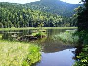 'Kleiner Arbersee' Copyright: Naturpark Oberer Bayerischer Wald