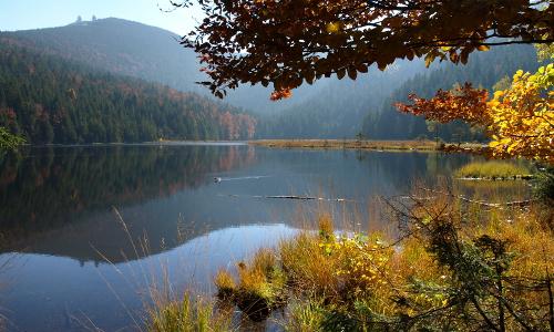 """Kleinen Arbersee Brigitte Deus Neumann beitrag """"Beispielhaft"""" – Gewässerschutzprojekte in Naturparken"""