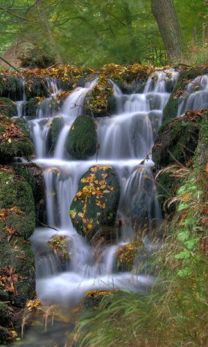 Kleiner Wasserfall im Quellbereich der Lutter bei Königslutterb Elmkreisel
