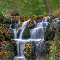 Kleiner Wasserfall im Quellbereich der Lutter bei Königslutter © Naturpark Elm-Lappwald