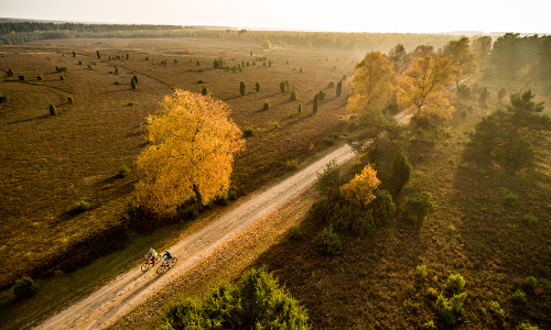 Misselhorner Heide Tiefental Herbst DK L³neburger Heide 2015 190b Stimmungsvolle Heidelandschaft