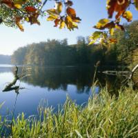 NP Lauenburgische Seen_1_beitragsbild
