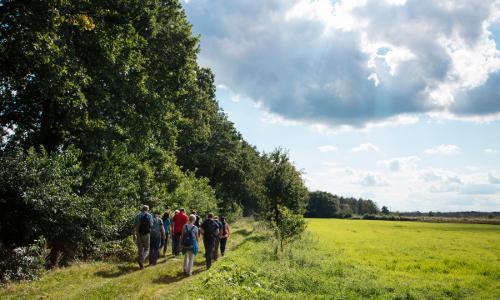 NPH Theikenmeer c Holger Leue web 2 Beitrag Der Weg ist das Ziel: Pilgern und Wandern im Naturpark Hümmling