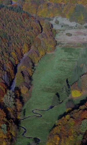 NSG Hafenlohrtal Copyright Dieter Stockmann Beitrag Einzigartiges Naturerlebnis ─ Naturpark Spessart