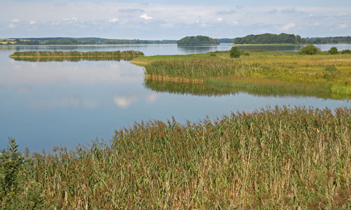 NSG Krakower Obersee Nossentiner Schwinzer Heide Jörg Gast Weite Wälder, stille Seen ─ Naturpark Nossentiner/Schwinzer Heide