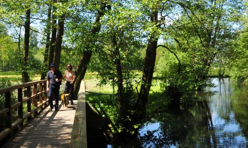 Naturpark Schwalm Nette wunsch Beitrag Wandervolle Wasserwelt – Naturpark Schwalm Nette