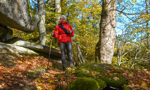Naturparkflyer Wandern 2019 10 01AW9 2b Naturpark Steinwald