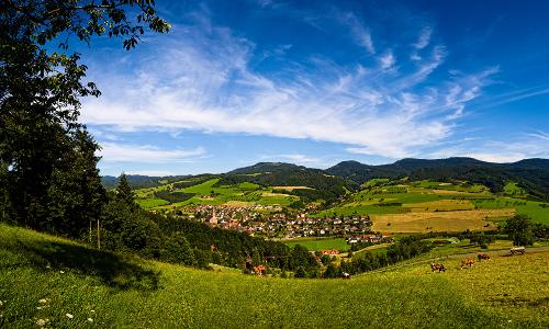 Oberharmersbach WEBb Vom Bauernhof Brunch zur Naturpark Vespertour