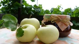 Apfelchutney mit Rosinen - Copyright: Beate Odenthal