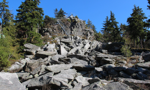 Saubadfelsen GeoparkRangerb Waldeck Vogelfelsen Weg