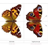 Schmetterlingspuzzle - Copyright: www.elternvommars.com