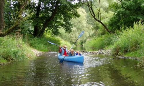 SpassAufDerVils beitrag Naturpark Hirschwald   Das grüne Herz der Oberpfalz