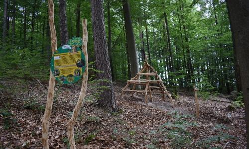 Station Wildkatzenversteckb Naturpark Haßberge