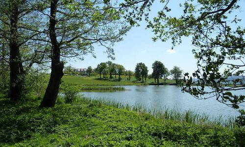 Teichlandschaft VDN Horst Bradschb Thüringer Wald