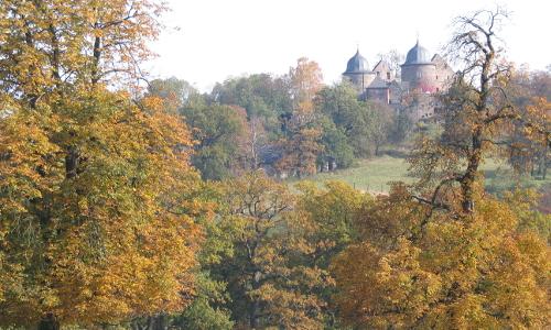 Tierpark und Dornröschenschloss Sababurg Stadt Hofgeismarb Tierpark, Urwald und Dornröschenschloss Sababurg