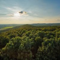 Traumhaft - Weitblick in den Naturpark von der Steinegge in Dissen - Copyright: Natur- und Geopark TERRA.vita