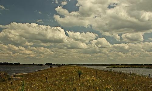 VogelparadiesB Moor ohne Grenzen   Naturpark Bourtanger Moor – Bargerveen