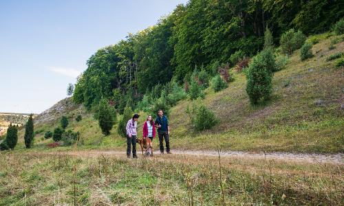 Wanderer Kalkmagerrasen Diemeltal Naturpark Reinhardswald Paavo Blafieldb Naturpark Reinhardswald